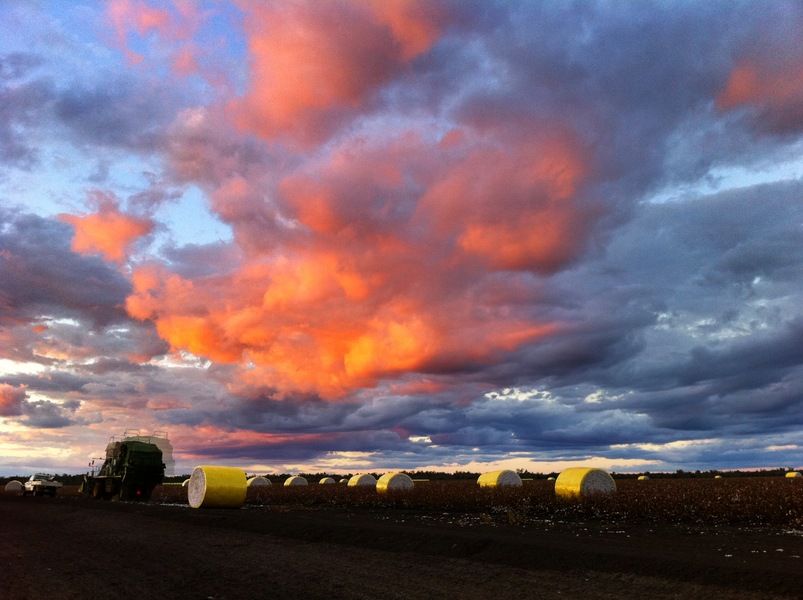Outback QLD sky over cotton field : Behind the scenes : fiona watson production